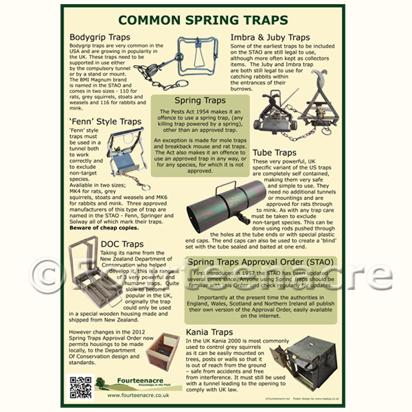 Common Spring Trap Poster