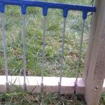 Feral Pigeon Traps - Bob Wire Door Improvement