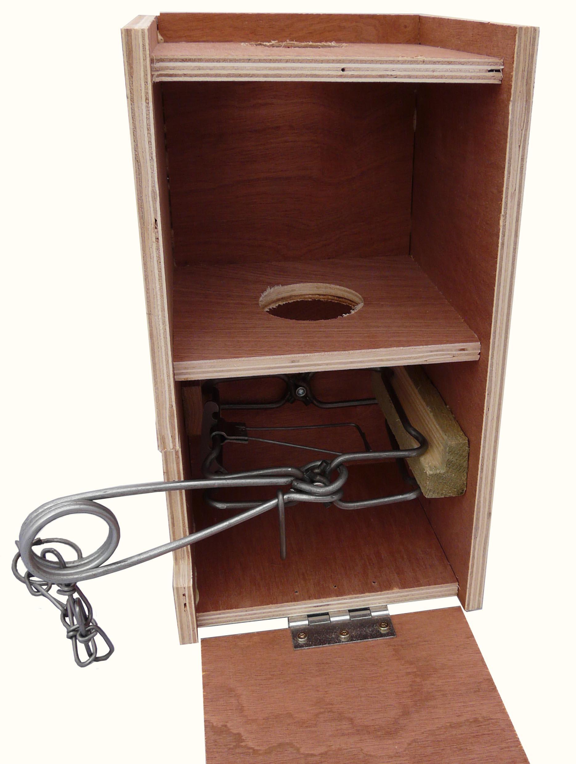 Fineren Bodygrip Box Trap For Squirrels