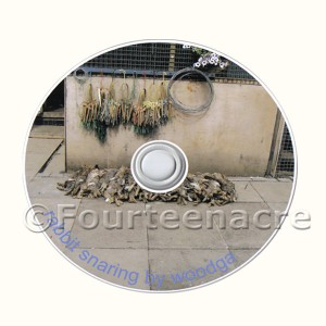 Woodga Rabbit Snaring DVD